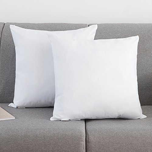 Ysther Set Of 2 Down And Feather Throw Pillow Insert